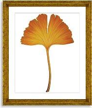 Ginkgo Leaf 2 - Framed Print & Mount, 56 x 46cm,