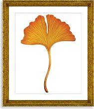 Ginkgo Leaf 3 - Framed Print & Mount, 56 x 46cm,