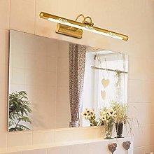 GIOAMH Golden Mirror Lights Bathroom, Vintage Wall