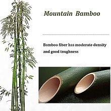 GIOAMH Reed Curtain,Bamboo Curtain,Outdoor Bamboo