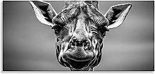 Giraffe Art Black White Animal Kingdom Canvas Wall