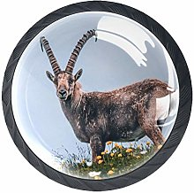 Glass Cabinet Knobs Animal Antelope with 3D Visual