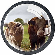 Glass Cabinet Knobs Animal Cow with 3D Visual