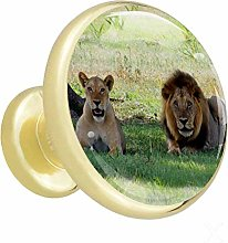 Glass Cabinet Knobs Animal Lion with 3D Visual