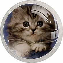 Glass Cabinet Knobs Brown Cute Kitten with 3D