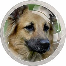 Glass Cabinet Knobs Brown Dog with 3D Visual