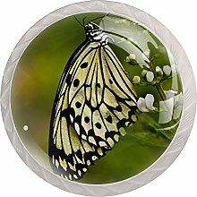 Glass Cabinet Knobs Butterfly with 3D Visual