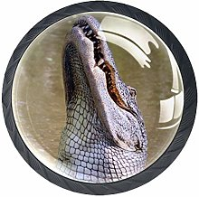 Glass Cabinet Knobs Crocodile with 3D Visual