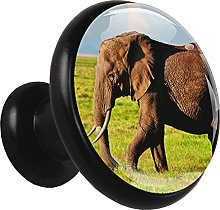 Glass Cabinet Knobs Cute African Elephant with 3D