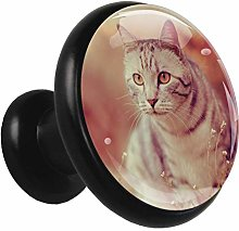 Glass Cabinet Knobs Cute cat with 3D Visual