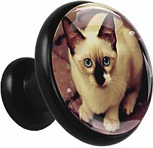 Glass Cabinet Knobs Cute Kitten with 3D Visual