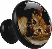 Glass Cabinet Knobs Cute Orange cat with 3D Visual