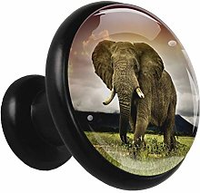 Glass Cabinet Knobs Elephant Meadow with 3D Visual