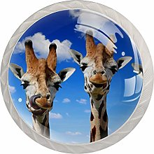 Glass Cabinet Knobs Giraffe with 3D Visual Effects
