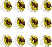 Glass Cabinet Knobs Horse Yellow Flower with 3D