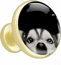 Glass Cabinet Knobs Husky with 3D Visual Effects