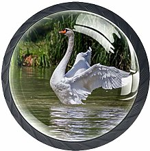 Glass Cabinet Knobs Lake Swan with 3D Visual