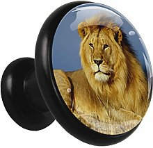 Glass Cabinet Knobs Lion with 3D Visual Effects
