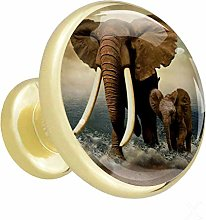 Glass Cabinet Knobs Seaside Elephant with 3D
