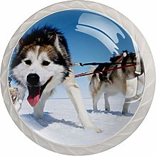 Glass Cabinet Knobs Sled Dogs with 3D Visual
