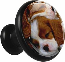 Glass Cabinet Knobs Sleeping Puppies with 3D