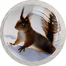 Glass Cabinet Knobs Squirrels Snow with 3D Visual