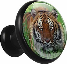 Glass Cabinet Knobs Tiger with 3D Visual Effects