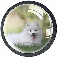 Glass Cabinet Knobs White Samoyed with 3D Visual