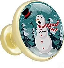Glass Cabinet Knobs Winter Snowman with 3D Visual