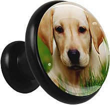 Glass Cabinet Knobs Yellow Dog with 3D Visual