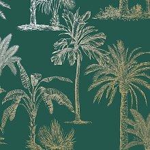 Glistening Tropical Tree Exotic Jungle Palm