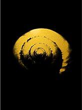 Gold Effect Yellow Black Shell Snail Spiral Art