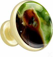 Golden Monkey 4 Piece Crystal Gold Knobs Round