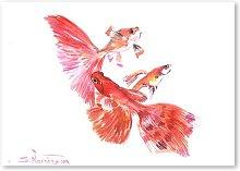 Goldfish Group by Suren Nersisyan Art Print