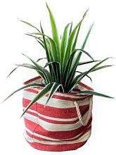 Grace and Grey - Red Stripe Basket