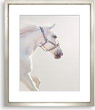 Graceful Stead Framed Print & Mount, 73 x 58cm,