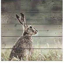 Graham & Brown Hare Print On Wood
