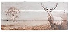 Graham & Brown Stag Wall Art On Fir Wood