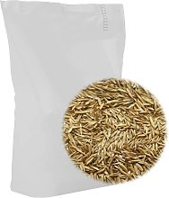 Grass Seed for Field and Pasture 20 kg - Vidaxl