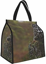 Great Gray Owl Owl Predator Forest Stump Lunch
