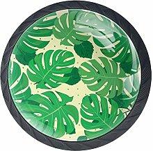 Green Jungle Palm Leaves Cabinet Dresser Drawer