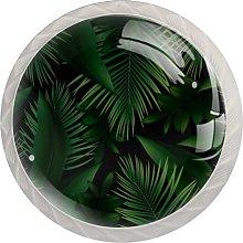 Green Leaves Foliage PlantRound Glass knob White