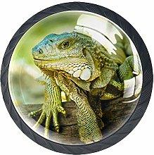 Green Lizard Crystal Door Knobs Glass Furniture