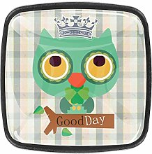 Green Owl Square Cabinet Knobs 4pcs Knobs for
