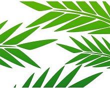Green Palm Branch Wallpaper Wall Sticker East