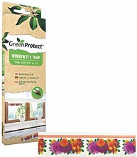 Green Protect Pack of 6 Window Fly Sticker Traps