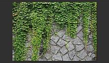 Green Wall 2.8m x 400cm Wallpaper East Urban Home