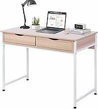 Greensen Computer Desk with 2 Drawers
