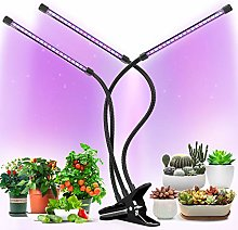 Grow Lights Plant Light for Indoor Plants Lamps