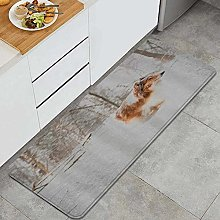 GUVICINIR Kitchen Mats Rug Washable,Animal